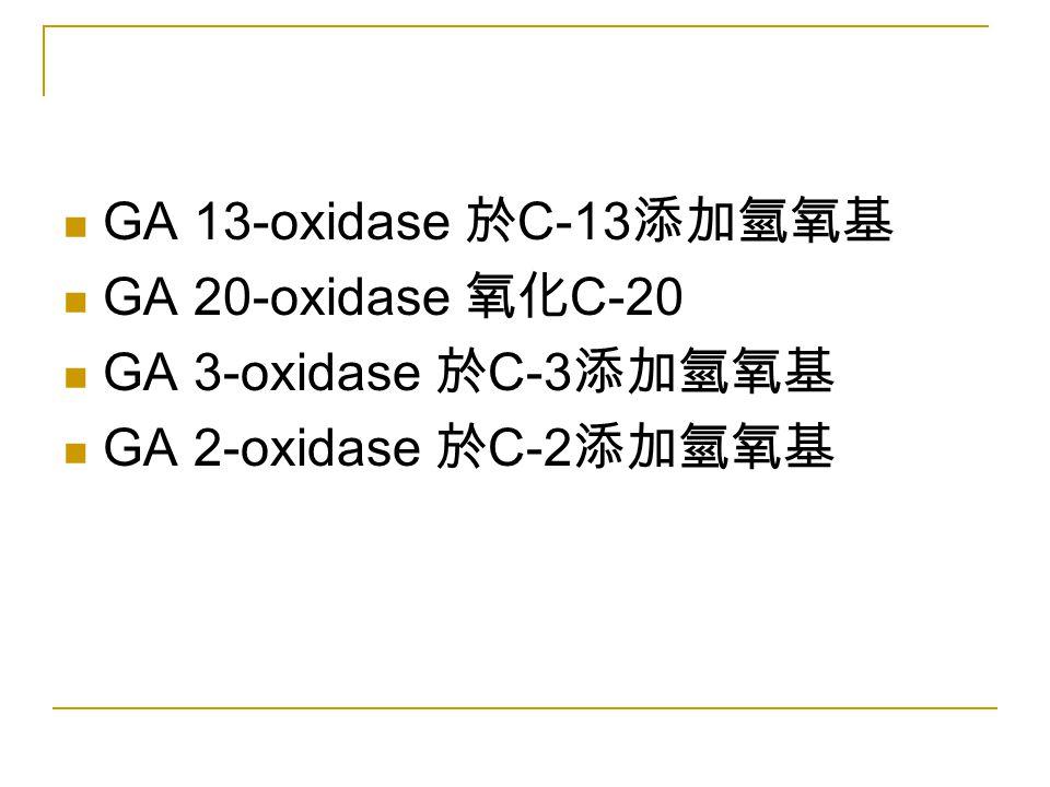 GA 13-oxidase 於C-13添加氫氧基 GA 20-oxidase 氧化C-20 GA 3-oxidase 於C-3添加氫氧基 GA 2-oxidase 於C-2添加氫氧基