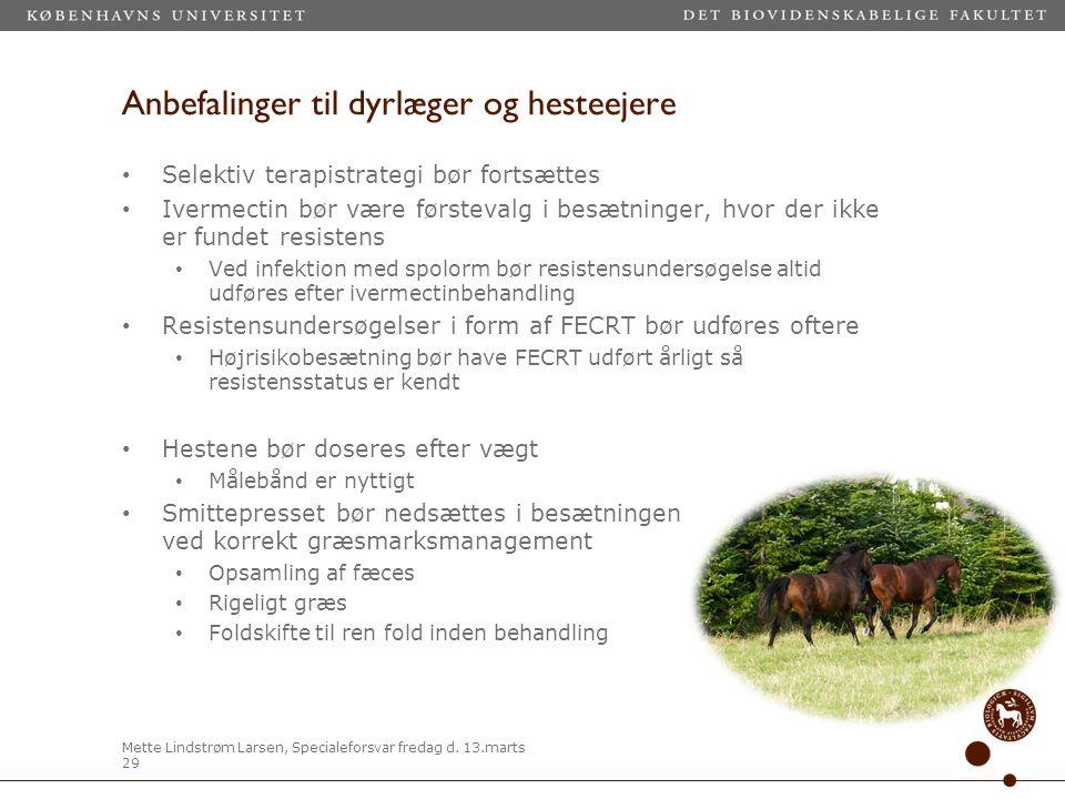 Anbefalinger til dyrlæger og hesteejere