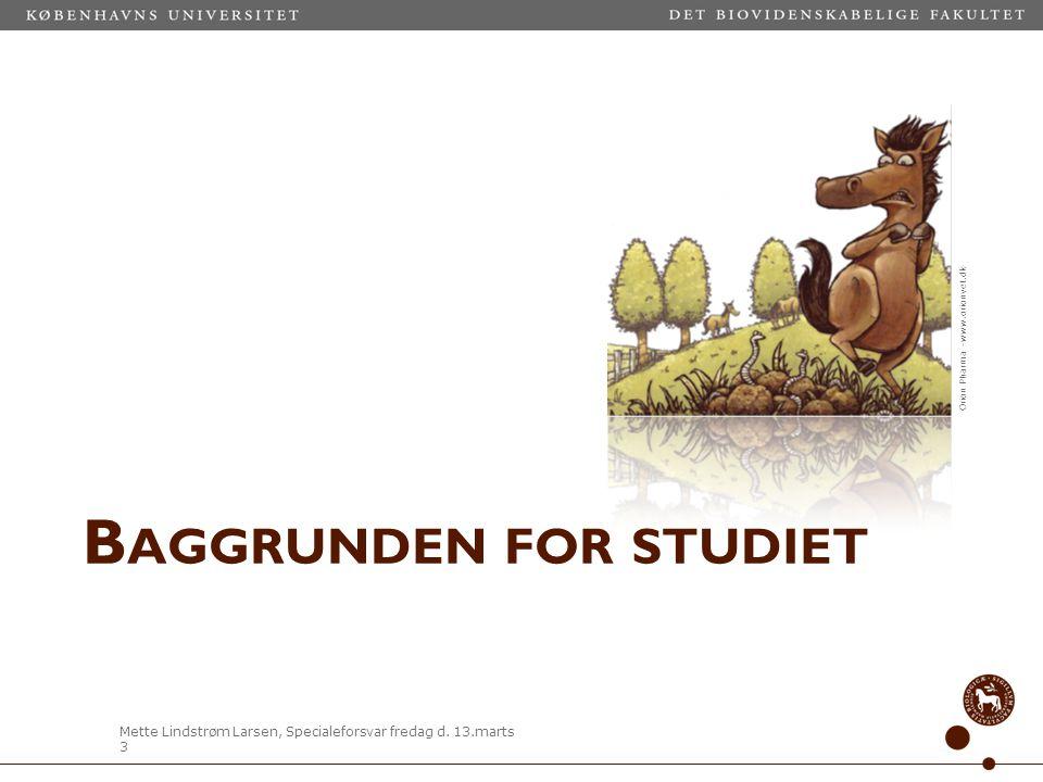 Baggrunden for studiet