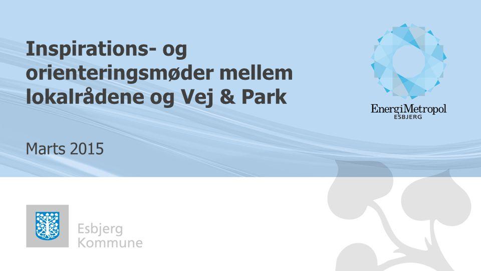 Inspirations- og orienteringsmøder mellem lokalrådene og Vej & Park