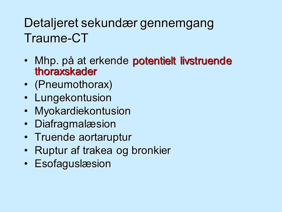 Detaljeret sekundær gennemgang Traume-CT