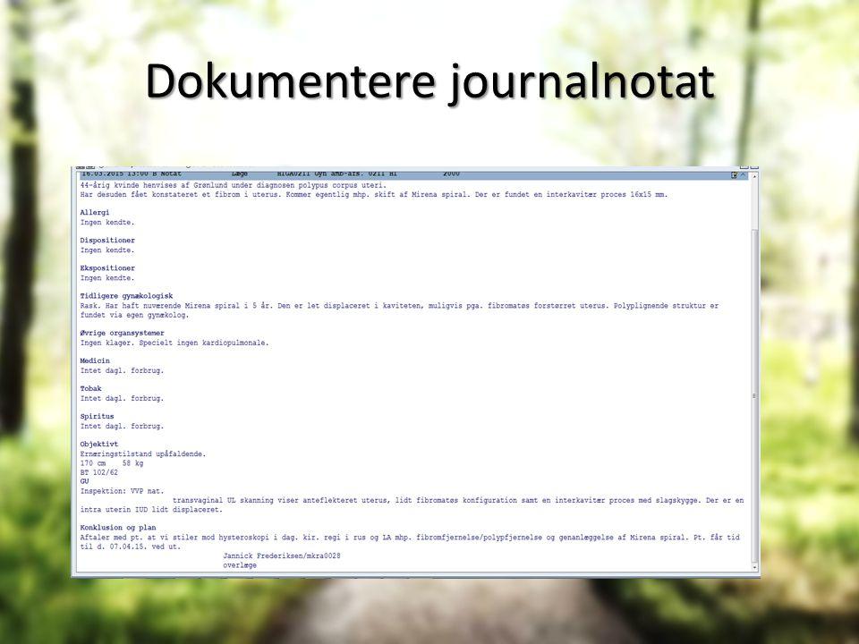 Dokumentere journalnotat