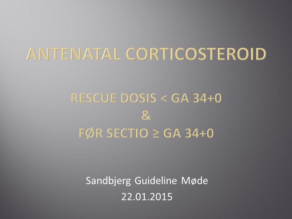 Sandbjerg Guideline Møde 22.01.2015