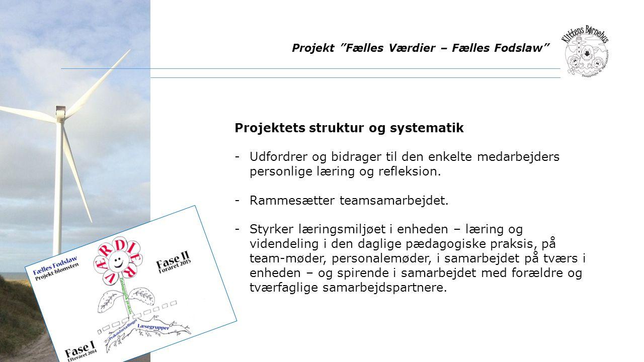 Projektets struktur og systematik