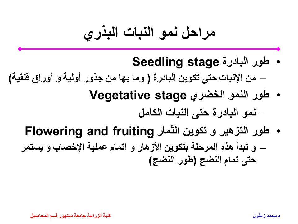 مراحل نمو النبات البذري