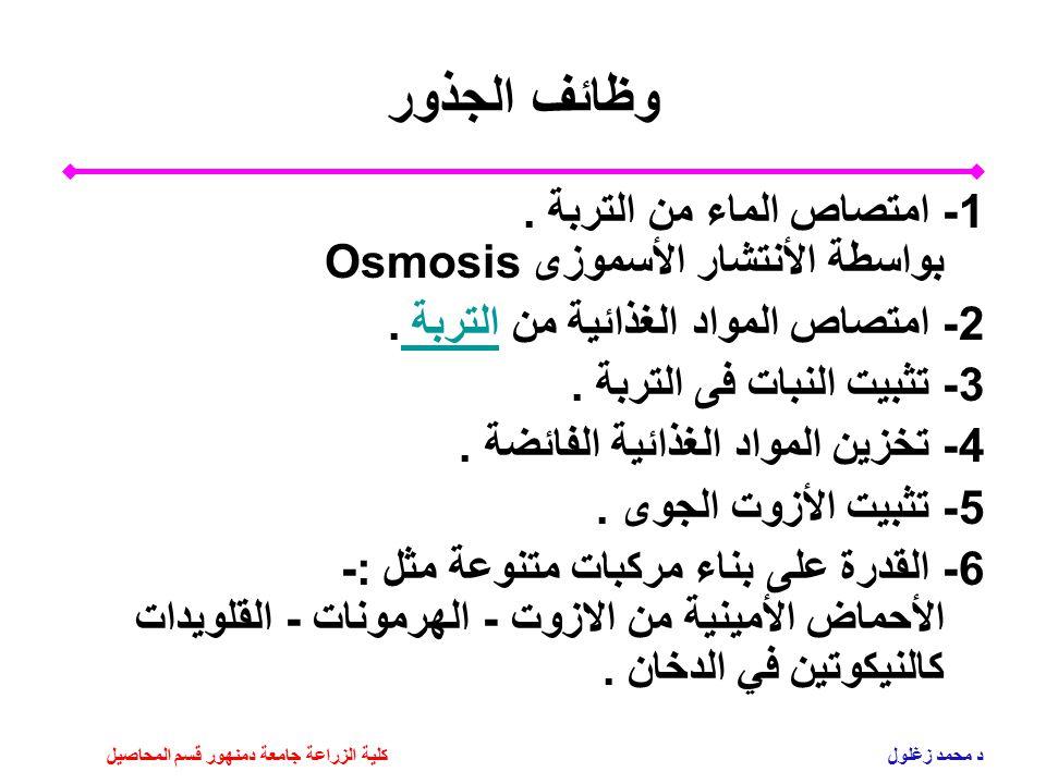 وظائف الجذور 1- امتصاص الماء من التربة . بواسطة الأنتشار الأسموزى Osmosis. 2- امتصاص المواد الغذائية من التربة .