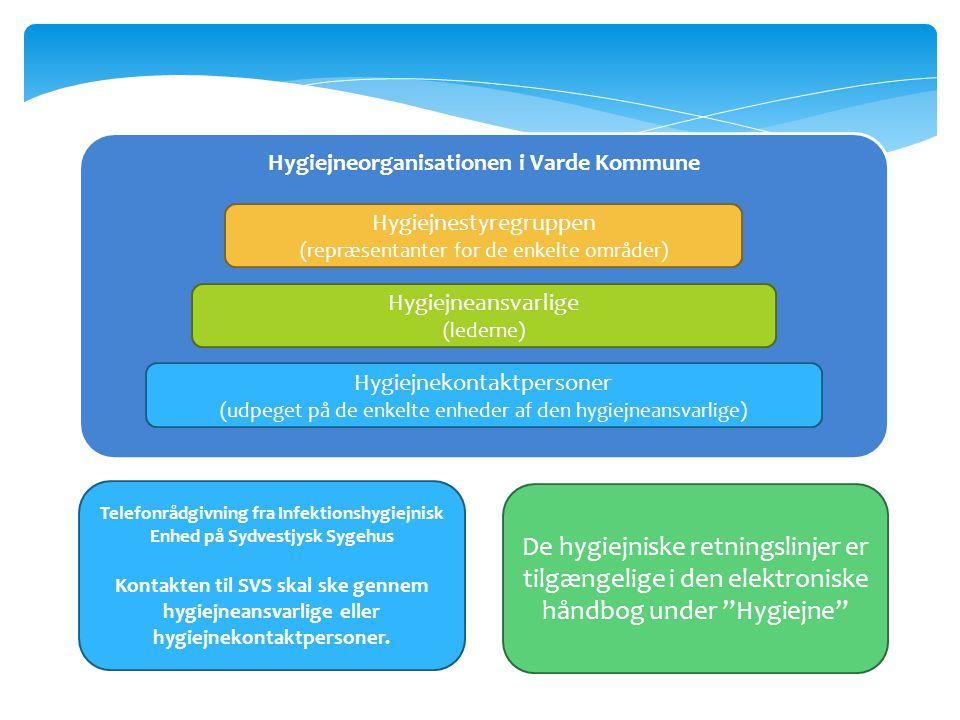 Hygiejneorganisationen i Varde Kommune