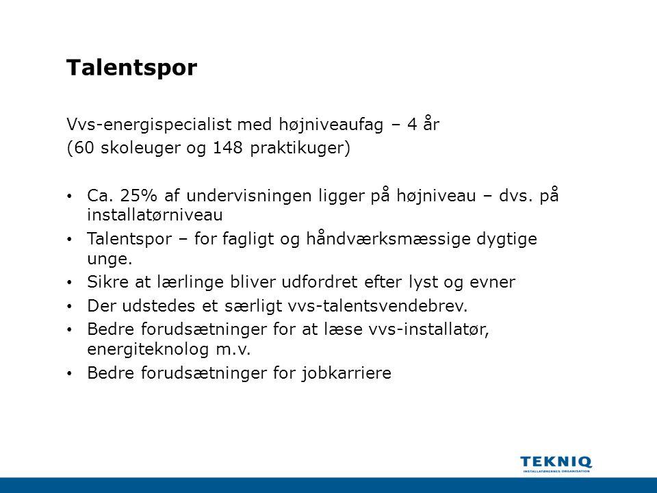 Talentspor Vvs-energispecialist med højniveaufag – 4 år