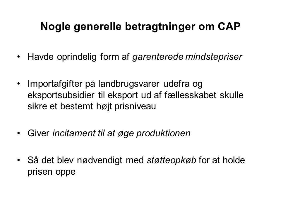 Nogle generelle betragtninger om CAP