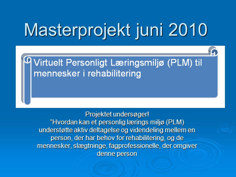 Masterprojekt juni 2010