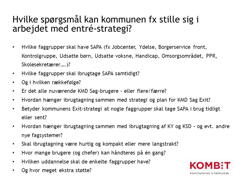 Hvilke spørgsmål kan kommunen fx stille sig i arbejdet med entré-strategi