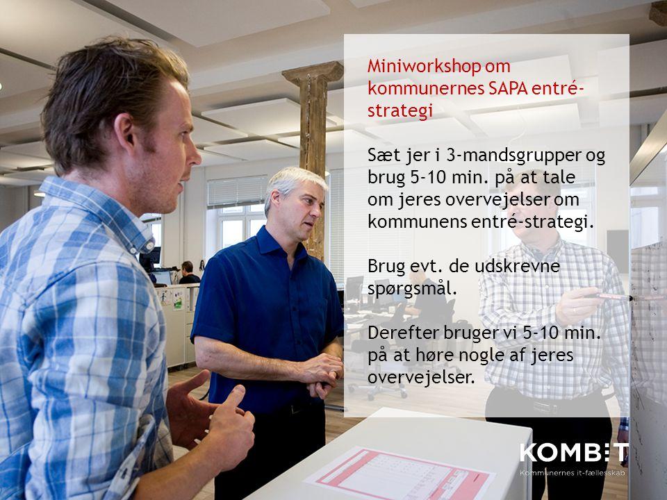 Miniworkshop om kommunernes SAPA entré-strategi