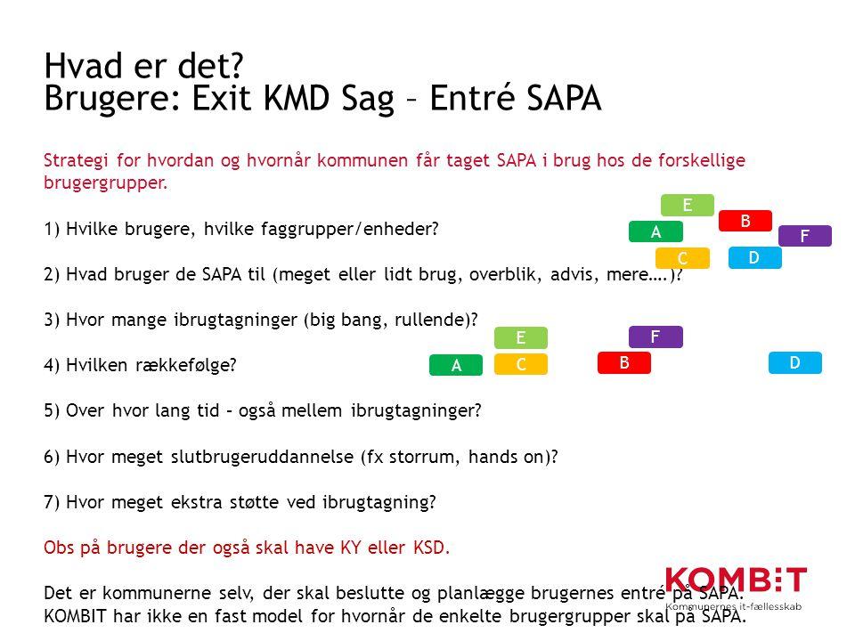 Hvad er det Brugere: Exit KMD Sag – Entré SAPA