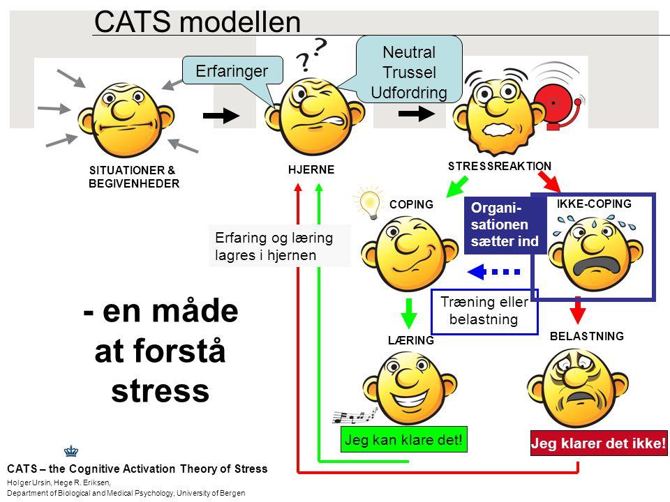 - en måde at forstå stress
