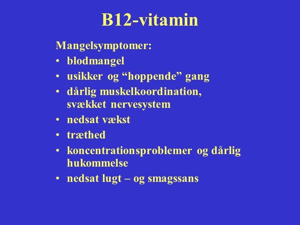 B12-vitamin Mangelsymptomer: blodmangel usikker og hoppende gang