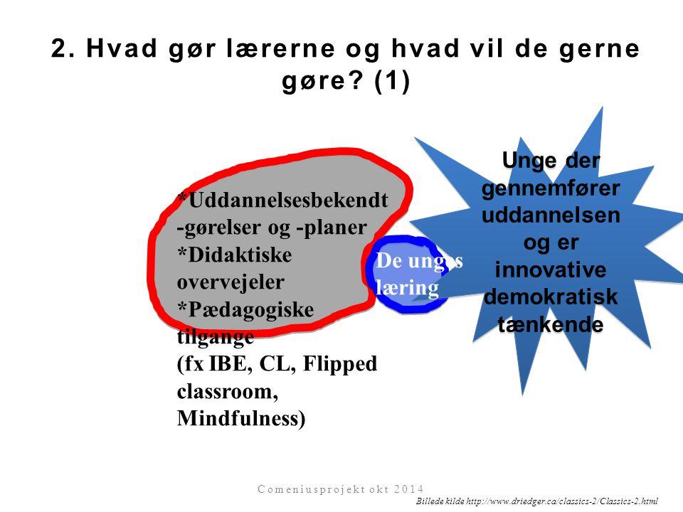 2. Hvad gør lærerne og hvad vil de gerne gøre (1)