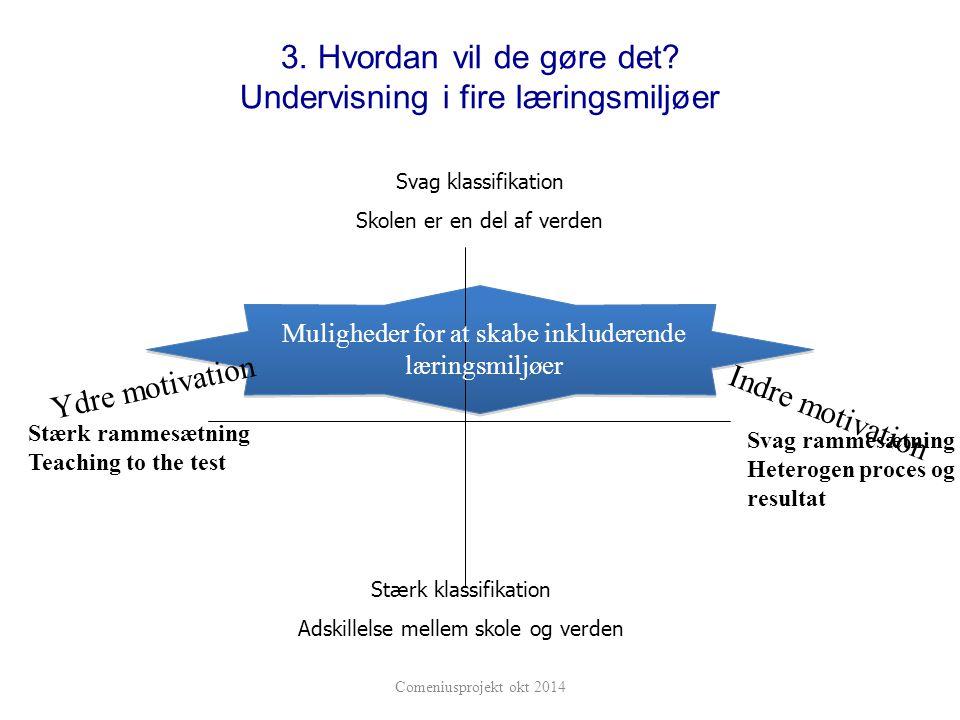 3. Hvordan vil de gøre det Undervisning i fire læringsmiljøer