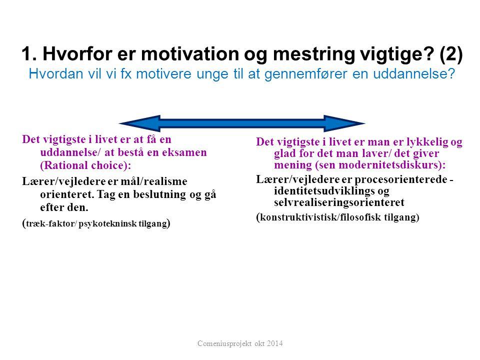 1. Hvorfor er motivation og mestring vigtige