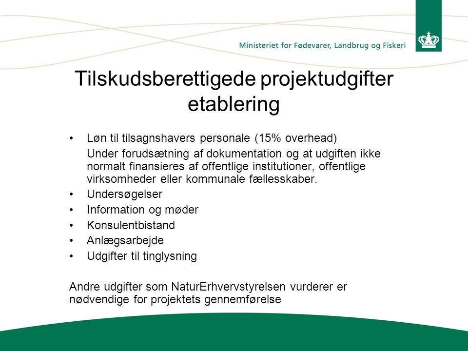 Tilskudsberettigede projektudgifter etablering