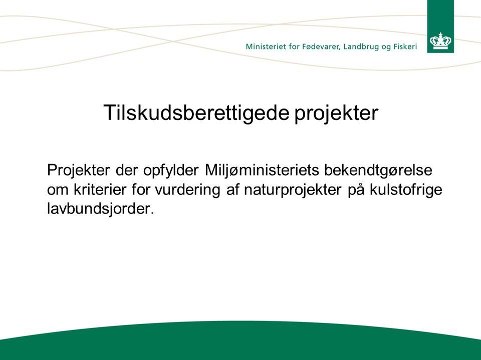 Tilskudsberettigede projekter