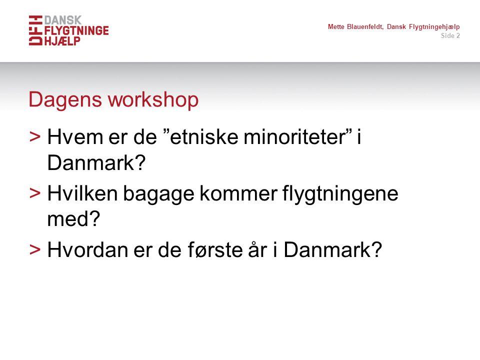 Hvem er de etniske minoriteter i Danmark