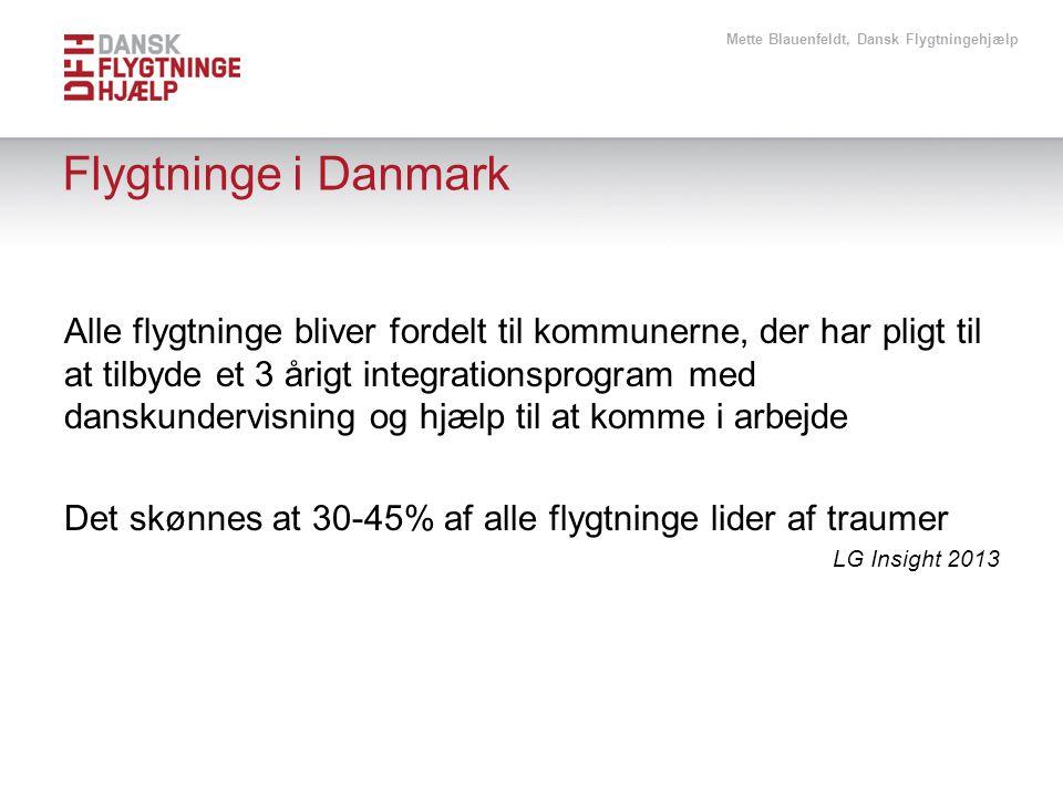 Mette Blauenfeldt, Dansk Flygtningehjælp