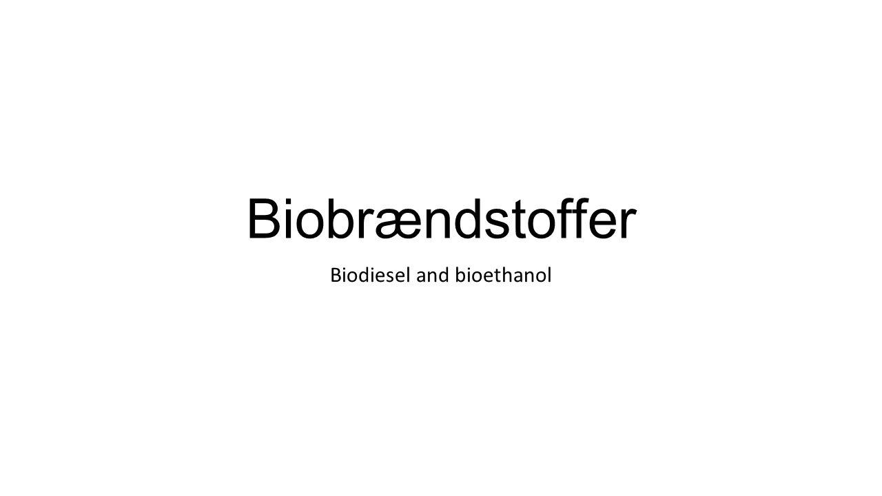 Biodiesel and bioethanol