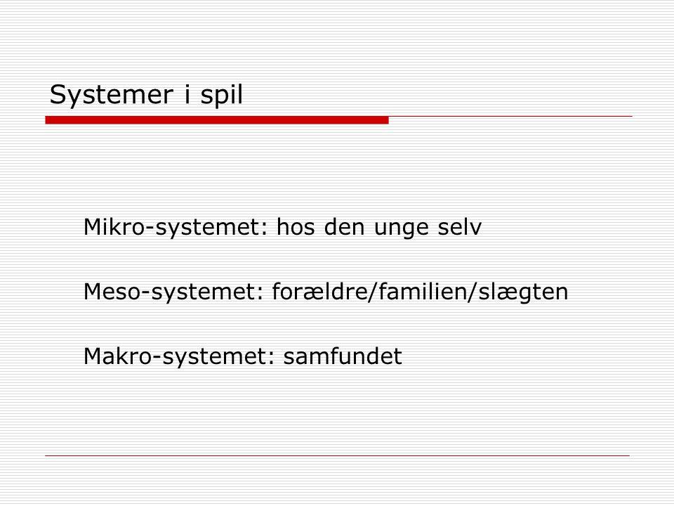 Systemer i spil Mikro-systemet: hos den unge selv