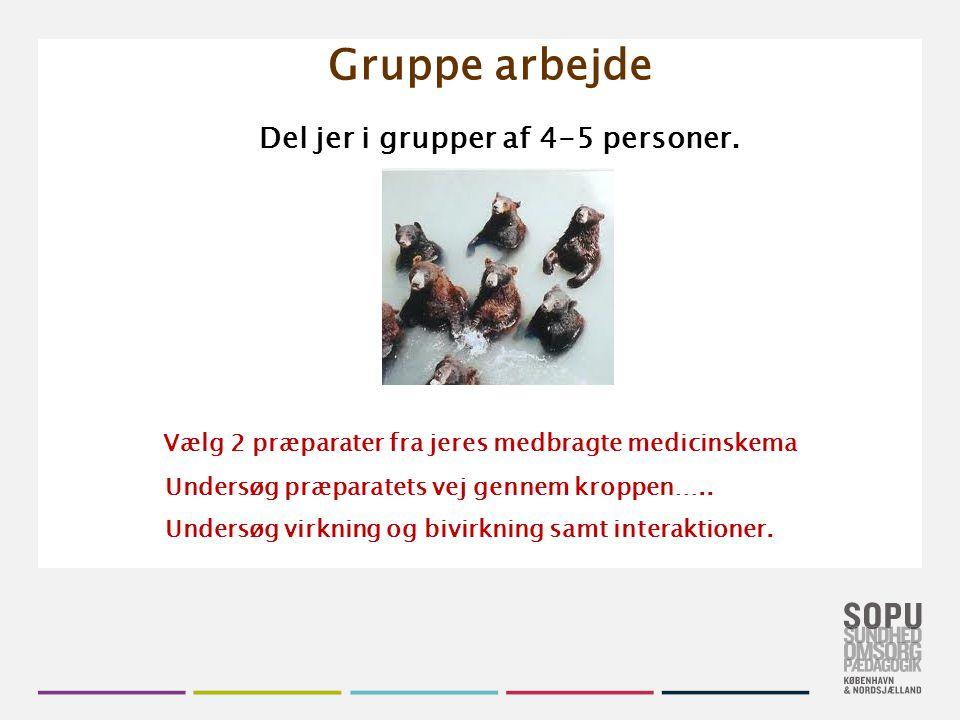 Gruppe arbejde Vælg 2 præparater fra jeres medbragte medicinskema
