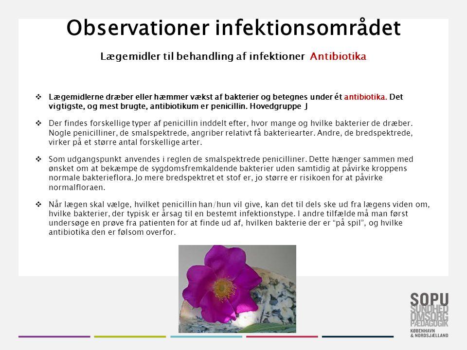 Observationer infektionsområdet Lægemidler til behandling af infektioner Antibiotika