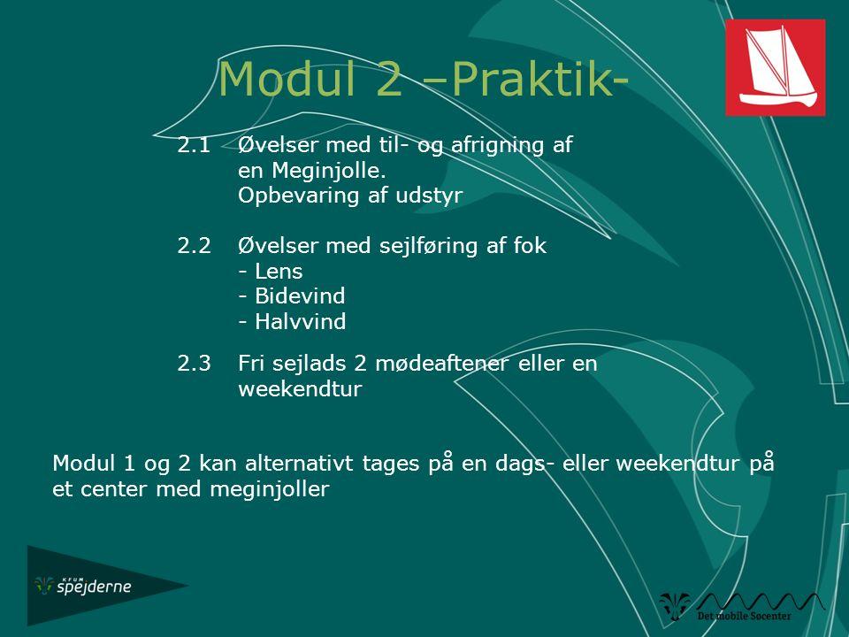 Modul 2 –Praktik- 2.1 Øvelser med til- og afrigning af en Meginjolle.