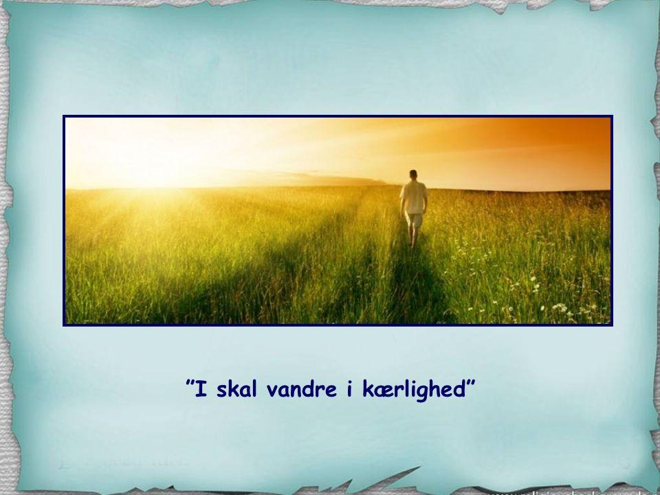 I skal vandre i kærlighed