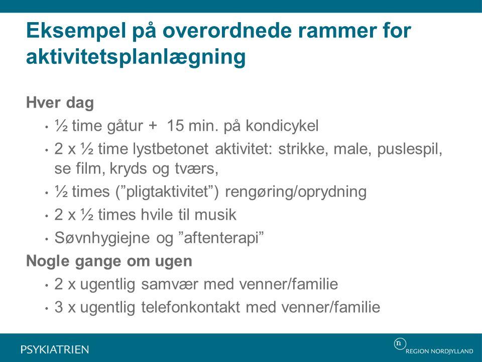 Eksempel på overordnede rammer for aktivitetsplanlægning