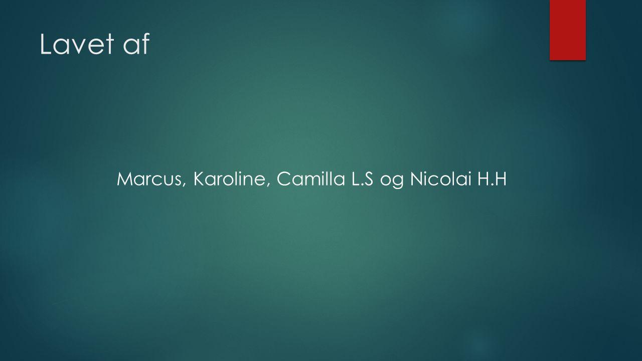 Marcus, Karoline, Camilla L.S og Nicolai H.H
