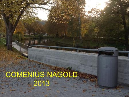 COMENIUS NAGOLD 2013. BRIEF PRESENTATION OF THE SCHOOLS FROM THE PROJECT COMENIUS.