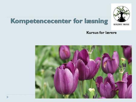 Kompetencecenter for læsning