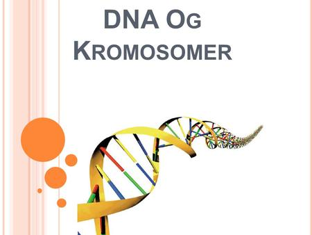DNA Og Kromosomer.