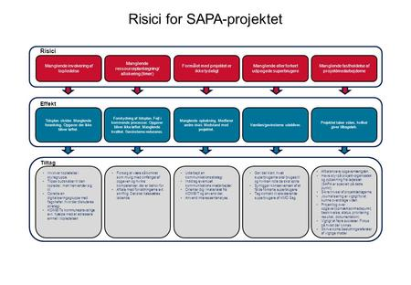 Risici for SAPA-projektet