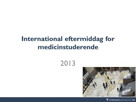 International eftermiddag for medicinstuderende 2013.