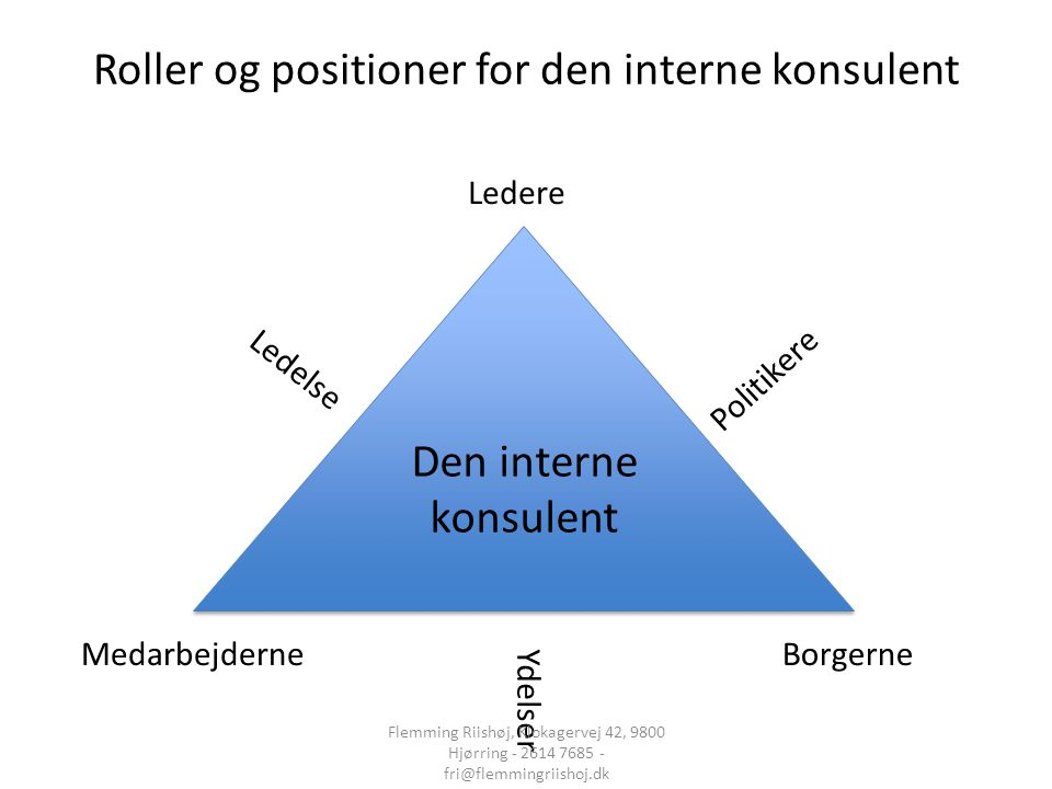 Roller og positioner for den interne konsulent