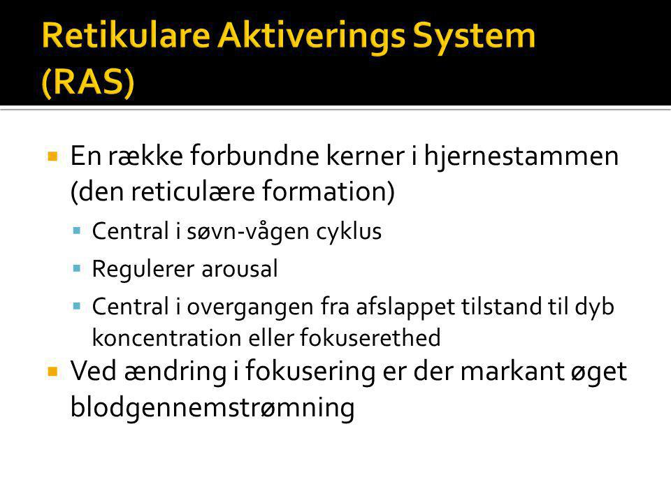 Retikulare Aktiverings System (RAS)