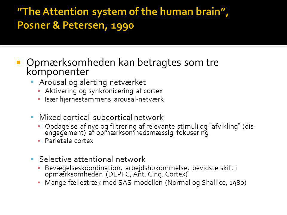 The Attention system of the human brain , Posner & Petersen, 1990