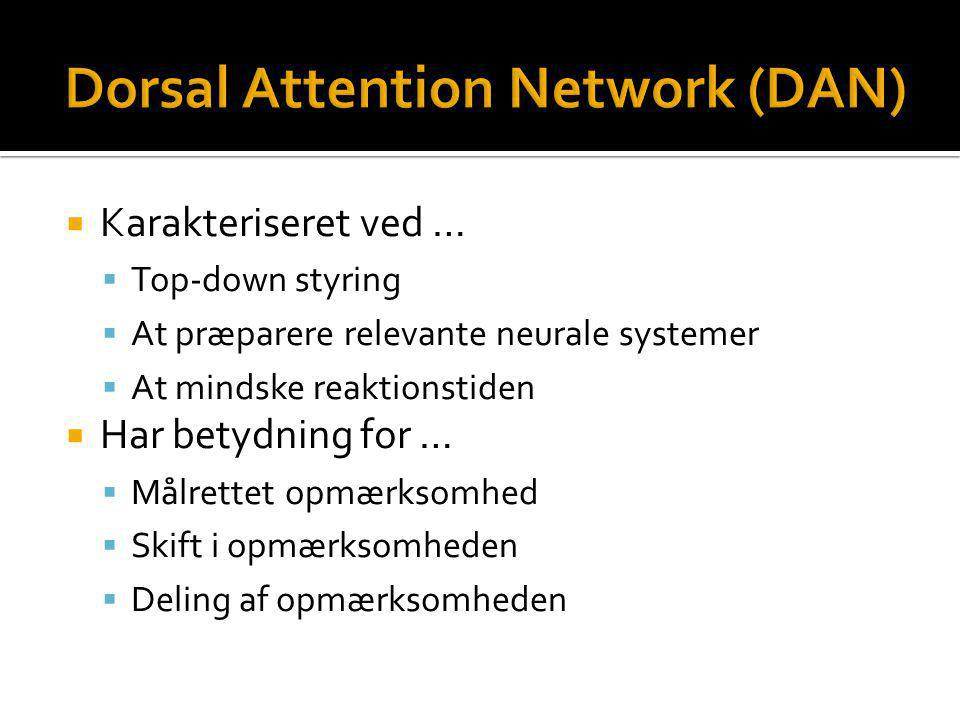 Dorsal Attention Network (DAN)