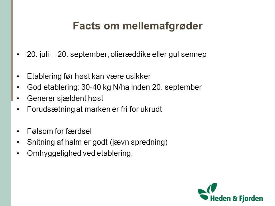 Facts om mellemafgrøder