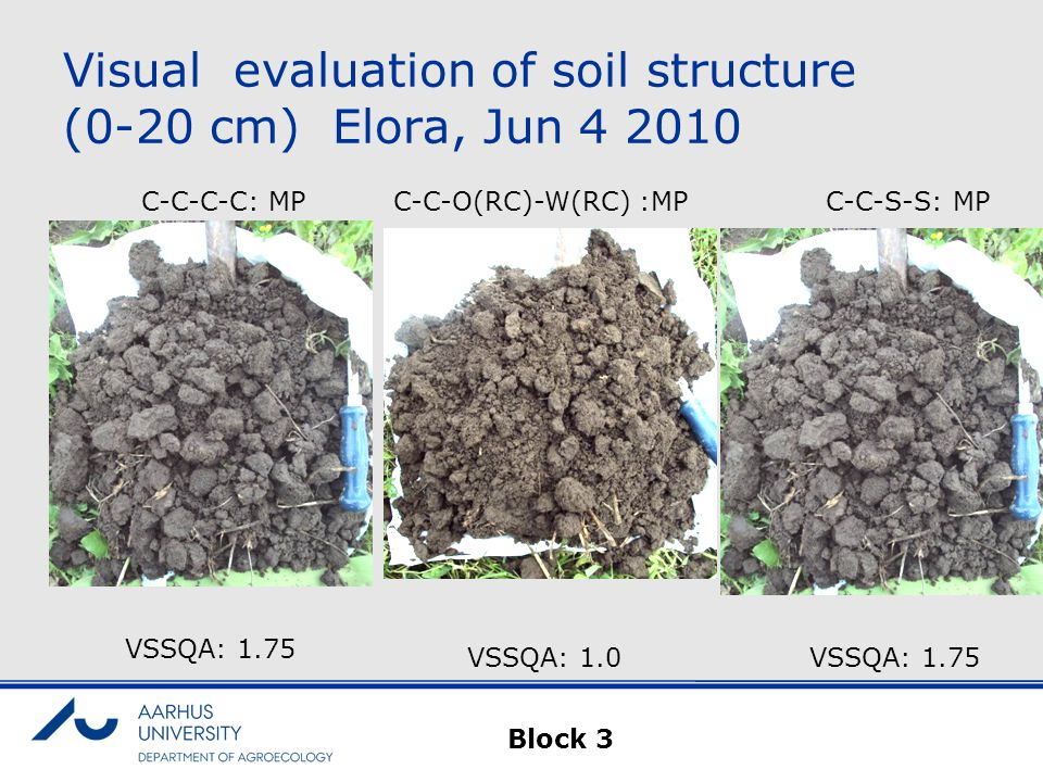 Visual evaluation of soil structure (0-20 cm) Elora, Jun 4 2010