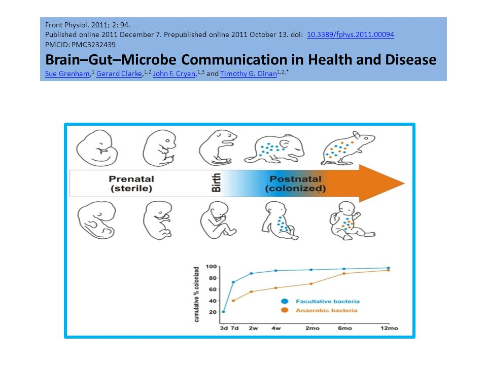 Brain–Gut–Microbe Communication in Health and Disease