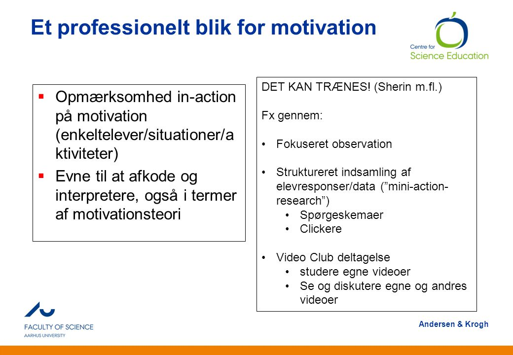 Et professionelt blik for motivation