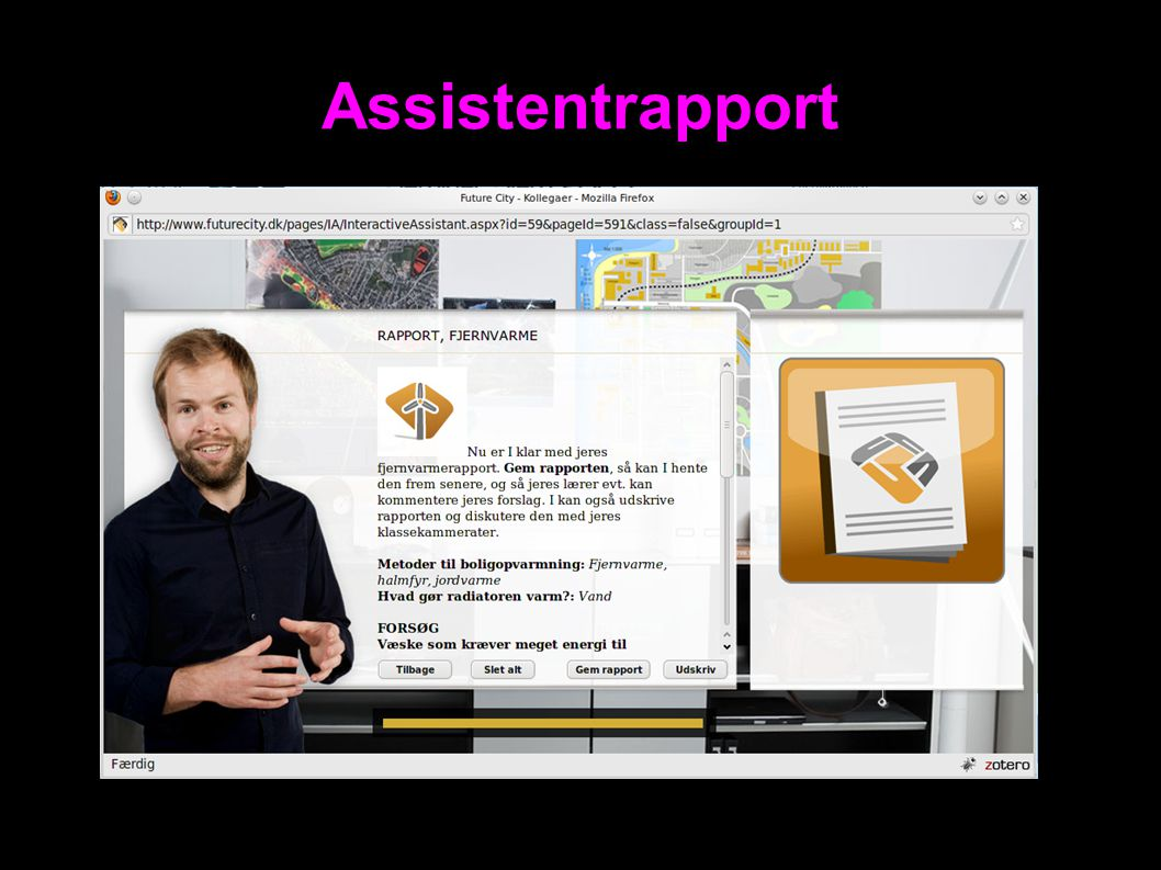 Assistentrapport 29