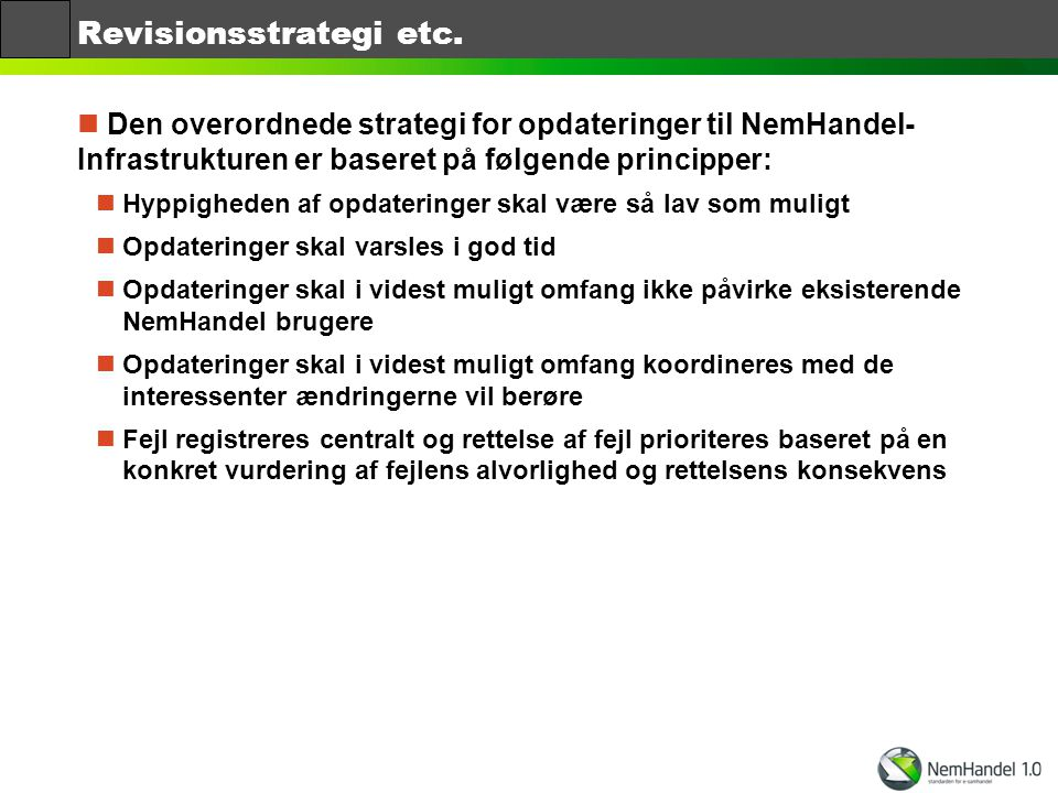 Revisionsstrategi etc.