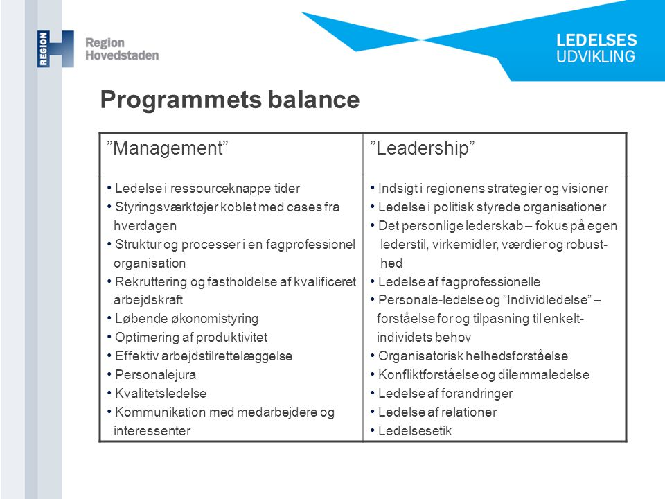 Programmets balance Management Leadership